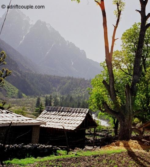 Batseri village in Sangla Valley, Kinnaur, Himachal Pradesh.