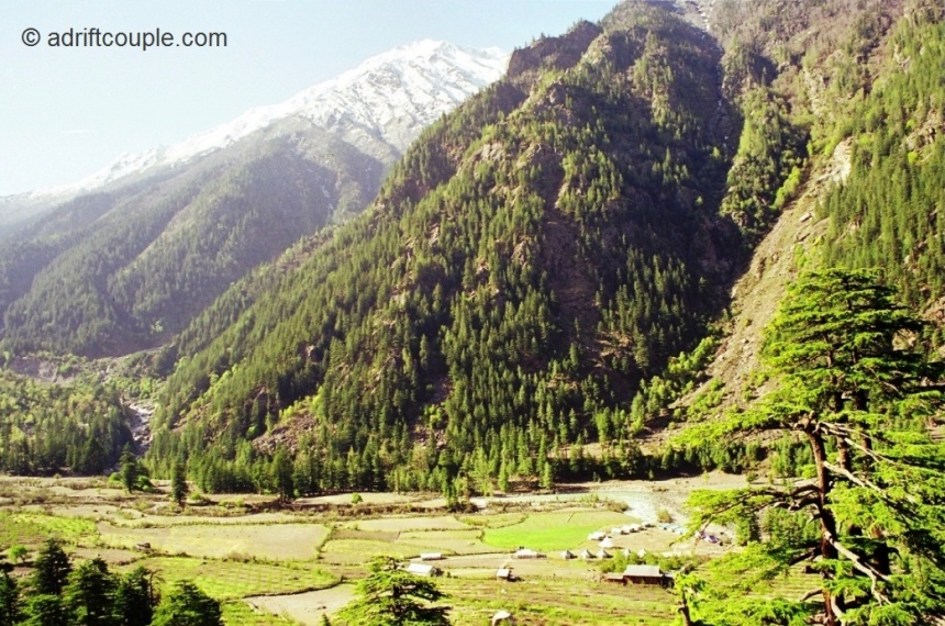 Idyllic environs at 8900 feet in Sangla Valley, Kinnaur, Himachal Pradesh