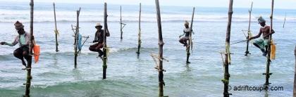 Stilt Fishermen in Sri Lanka.