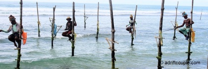 Stilt Fishermen in Sri Lanka.