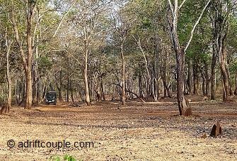 Jeep Safari Nagarhole