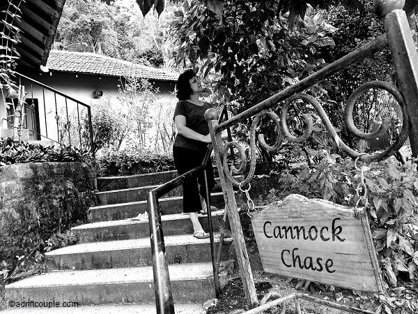 Cannock Chase Cottage